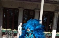 Man Dressed In Feather Costume.