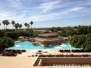 Pool, palm trees, lounge area.