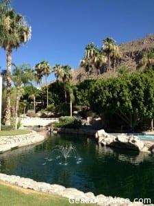Water, Palm Trees, beautiful.