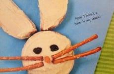 Mr. Pita Rabbit