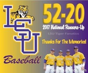 Thank you Tigers 1