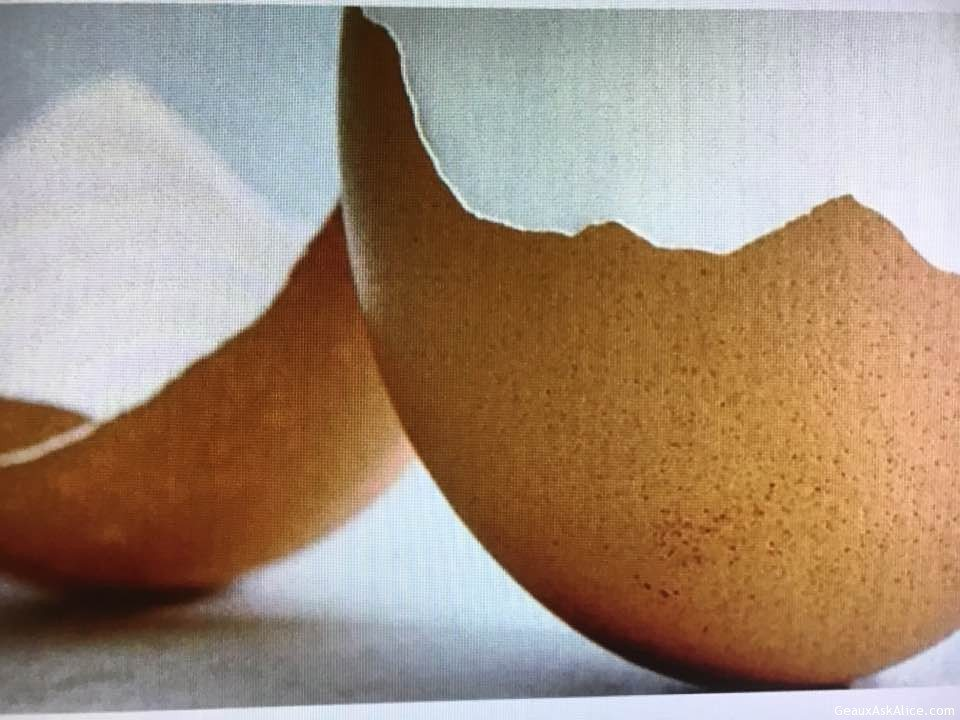 Today's Tip Of The Day! How To Peel Eggs Easily!