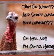 Thanksgiving Humor!