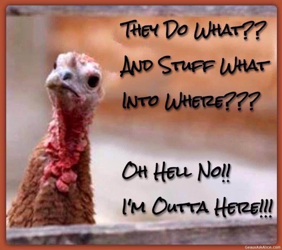 Thanksgiving Humor!
