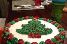 Christmas Cake So Festive!