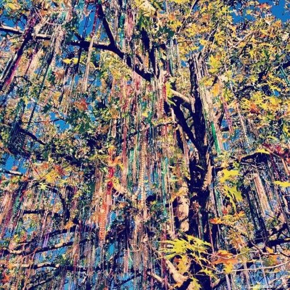 Tree Of Beads….