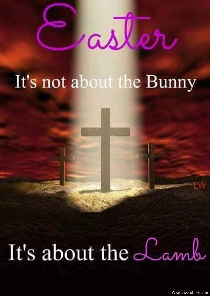 It Is Not About The Bunny