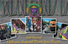 2nd Annual Imperial Mardi Gras Parade