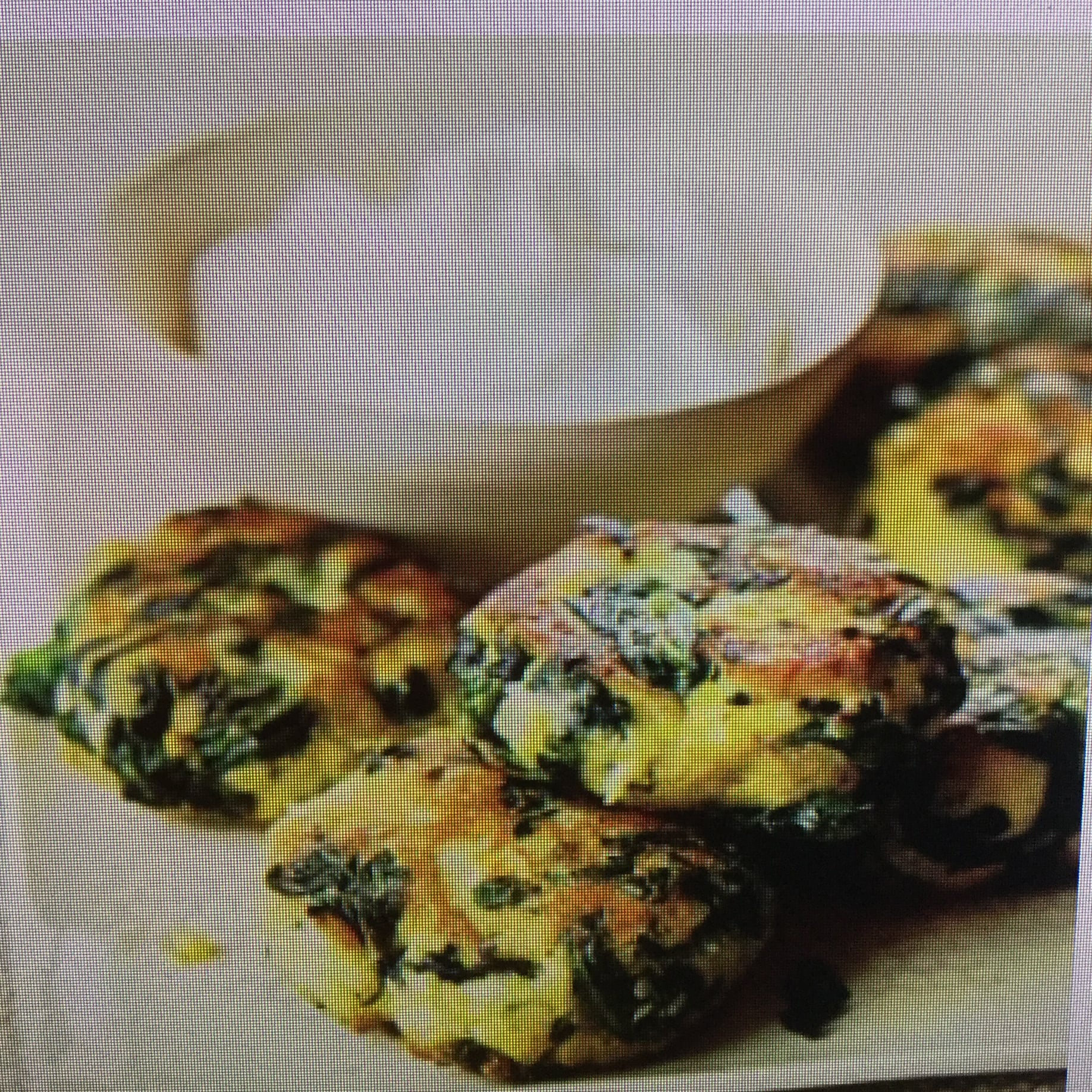 Breakfast Spinach-Potato Fritter