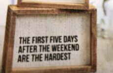 The First Five Days....