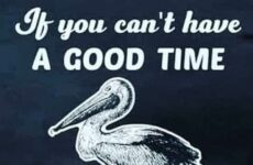 If You Can't Have A Good Time...